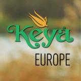 Каталог Keya 2016